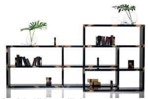 Lacquer and Horn Shelving