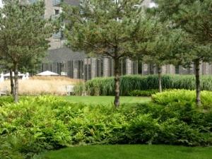 Charlotte garden variety of plant life.