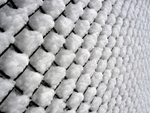 chain link in the DC snow