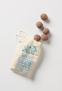 Seed Bombs, $6 | Anthropologie.com