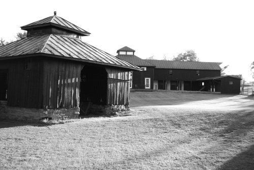 Wooden structures on the site (tasting room at back).
