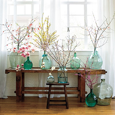 Branches from almost any Spring flowering shrub or tree can be used. Consider forsythia, red bud, pussy willow, quince, crab apple and cherries to bring inside for a forced flourish.